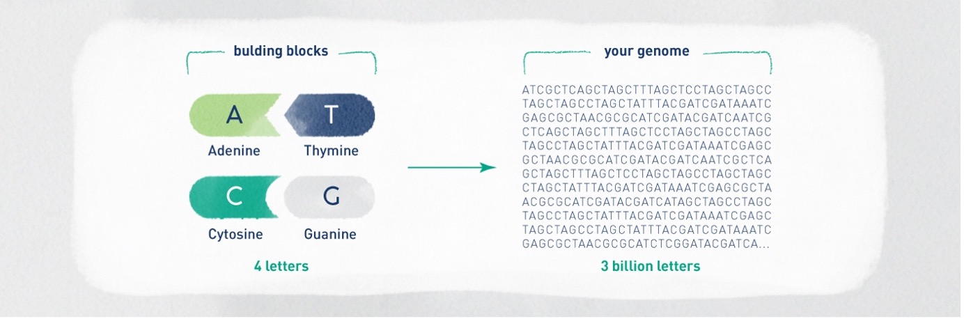Precision Medicine Key Words You Need to Know